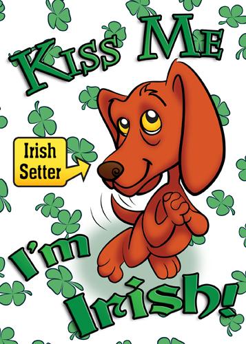 Irish Setter 3