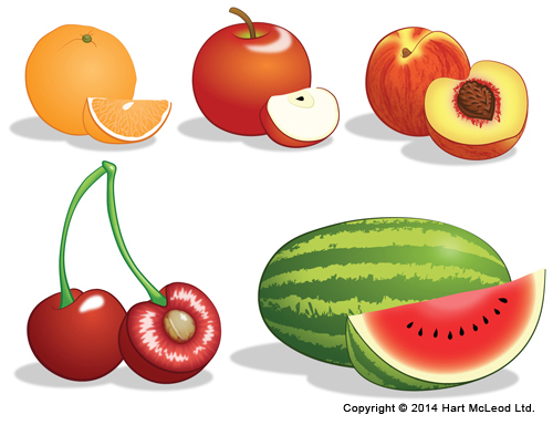 Five Vector Fruits