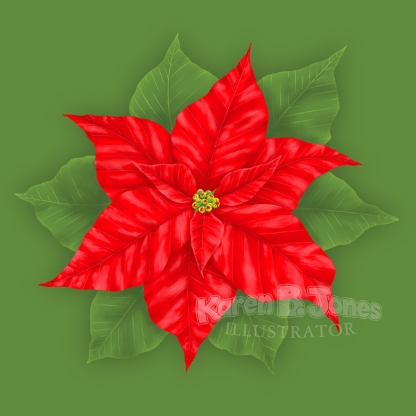 An illustration of a poinsettia plant on a green background.